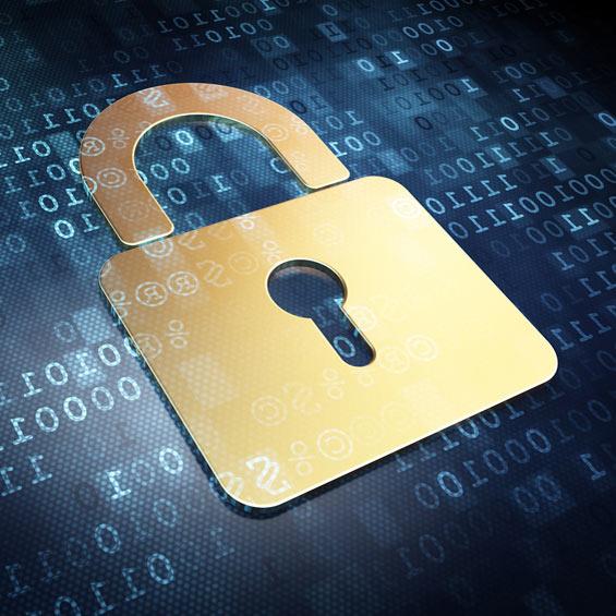 Spletna varnost